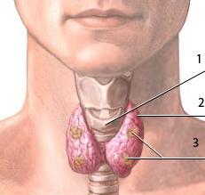 Частое мочеиспускание с болью внизу живота у мужчин причины